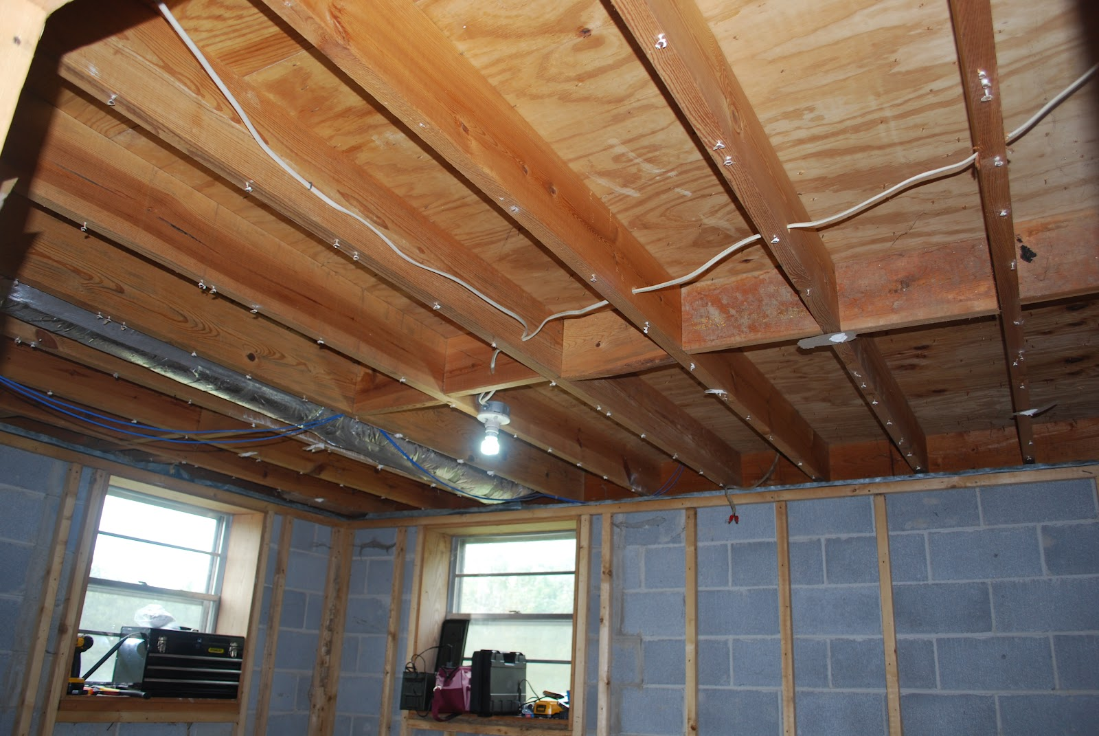 the ceiling and adding 4 can lights and possibly a ceiling fan
