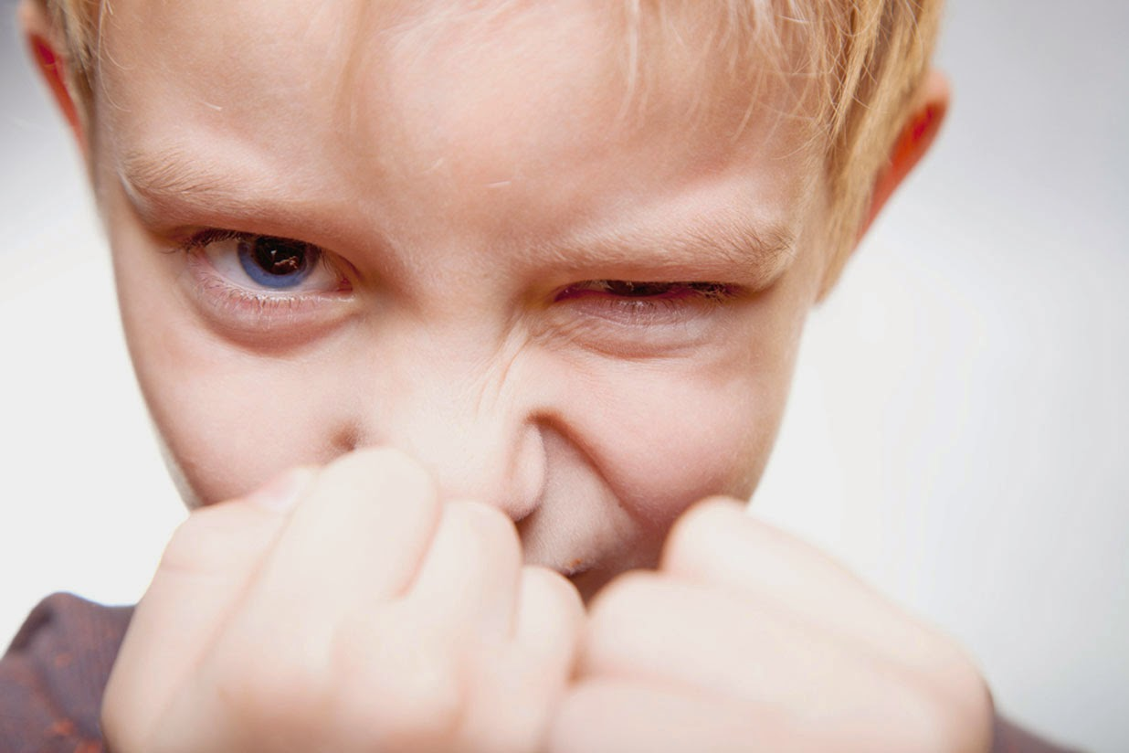How to Deal with a Child's Destructive Behavior