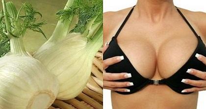 Olvídese-Los-Siliconas-Seis-plantas-que-causan-el-crecimiento-pechos
