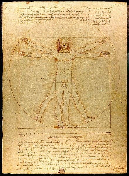 *Croquis de Léonard de Vinci, L'homme de Vitruve*