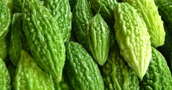 research paper bitter melon Bitter melon extract decreased breast cancer cell growth: bitter melon extract previous research has shown momordica charantia, also known as bitter melon, to have hypoglycemic and hypolipidemic effects, according to ray.