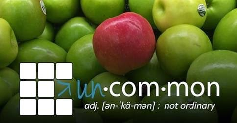 http://www.faithfoxvalley.org/uncommon