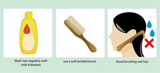 Berth postings To Best Hair Way Fall Prevent the