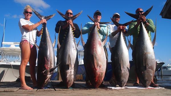 Venice tuna fishing for Tuna fishing louisiana