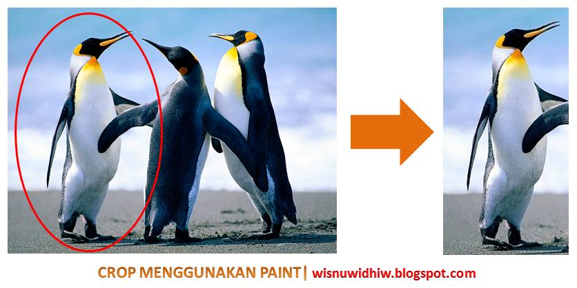cara memotong foto/gambar dengan Paint