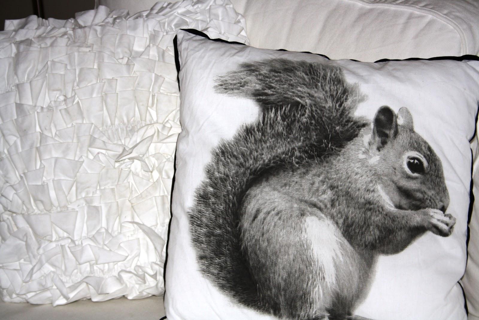 Kuddar Jysk : Lantligt i smultronbacken my home squirrel