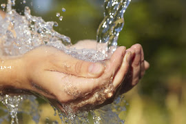 Saneamento básico reduz doenças