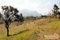 Tanah luas di Bandung di Cibiru dijual Info Griya