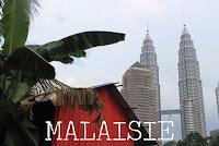 http://voyages-et-cie.blogspot.fr/search/label/Malaisie