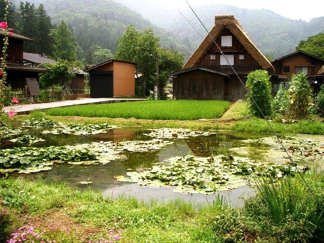 Mpv landskap dan nurseri: panorama indah setiap musim di shirakawa ...