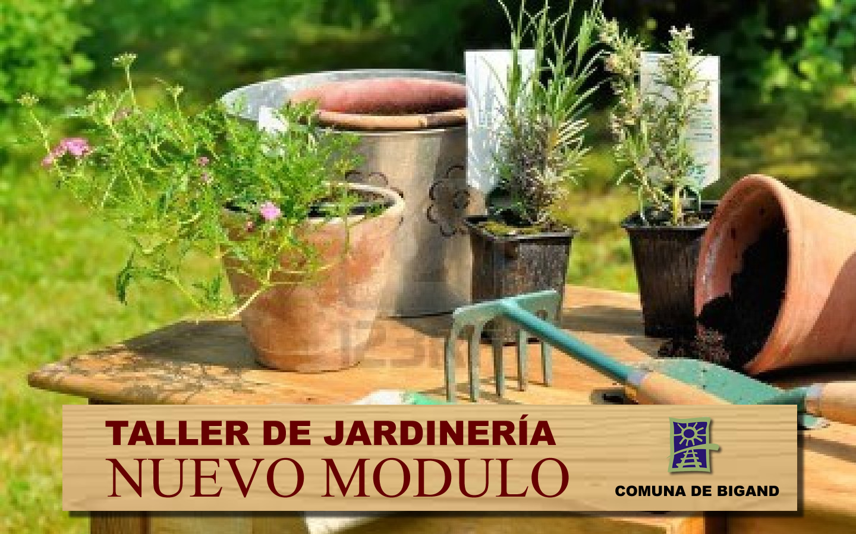 No te pierdas el tercer m dulo del curso de jardiner a for Aprender jardineria
