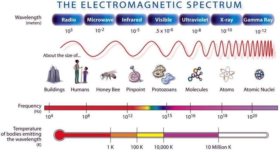 BestThinking / Thinkers / Science / Lee Bishop (Blog) - What is ...