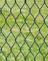 Πώς μπορούμε να προστατέψουμε το χωράφι μας ή τον κήπο μας από κουνέλια, λαγούς, ασβούς, μεγάλα τρωκτικά;