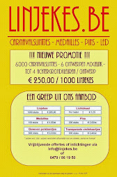Carnavalslintjes - medailles - pins - polsbandjes - bedrukking - licht (panelen/draad) / foamhoeden