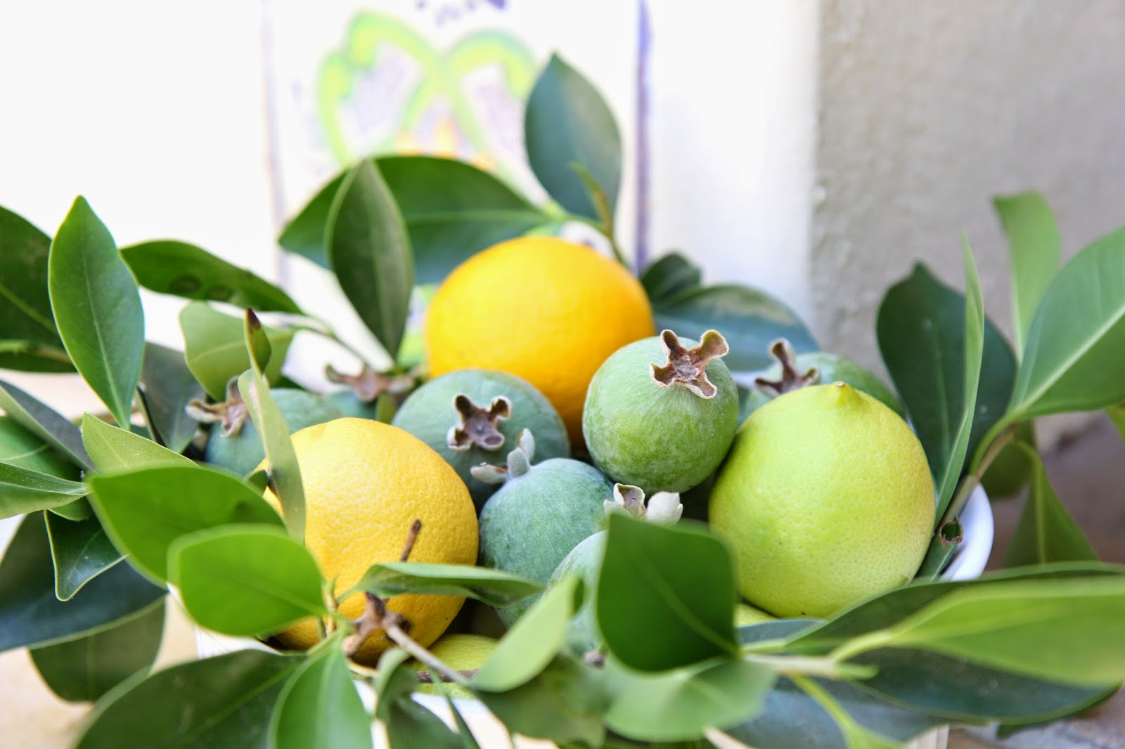 Yellows, greens, and blues: Simple Summer Fruit Bowl; Nora's Nest