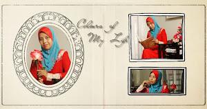 Puan Blog Nih