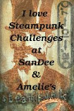 SanDee &amp; Amelie&#39;s Challenges