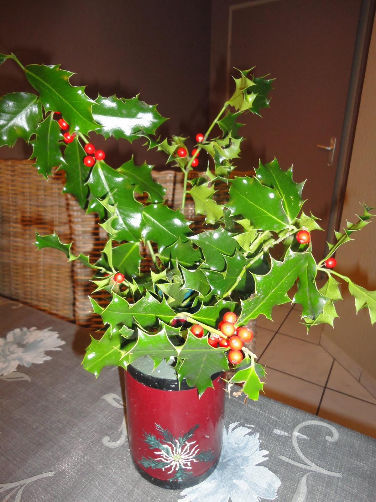 Vanille fraise et chocolat mois de d cembre - Plantes qui fleurissent l hiver ...