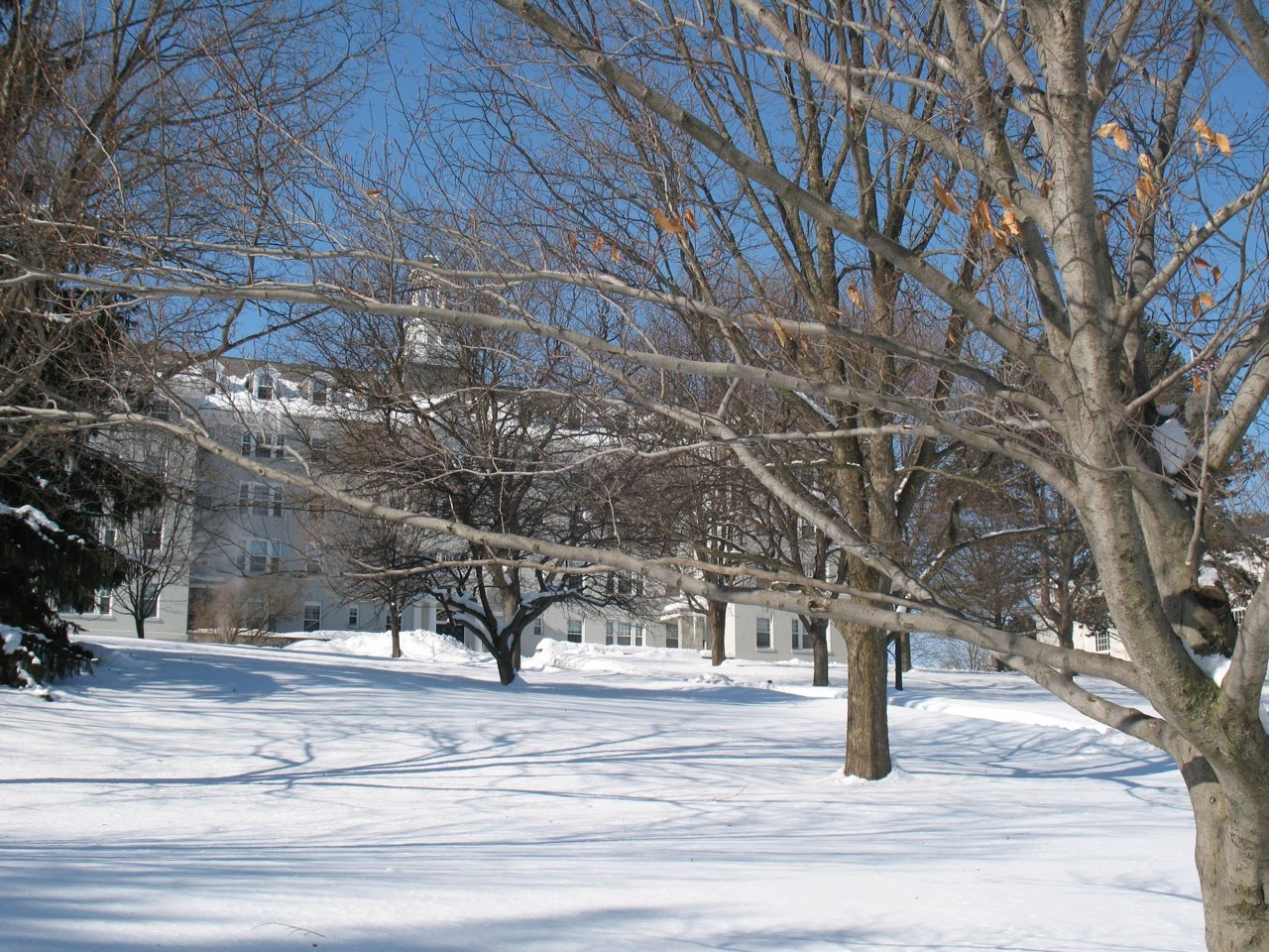 middlebury college essays The best hotels and restaurants near middlebury college middlebury is a small school with an enrollment of 2,450 students who love their supplement essays no.