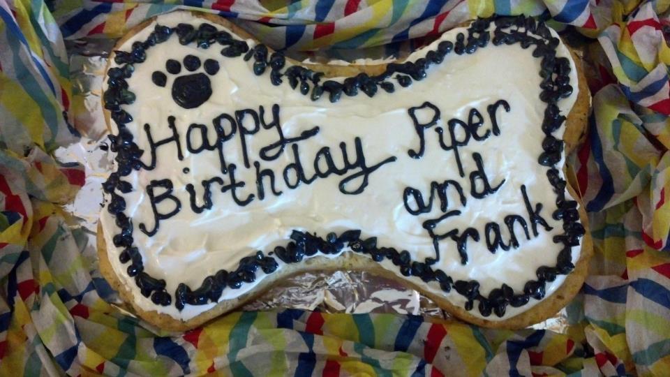 Frosting Fran Dog Birthday Cake Made In Foil Bone Shaped Pan