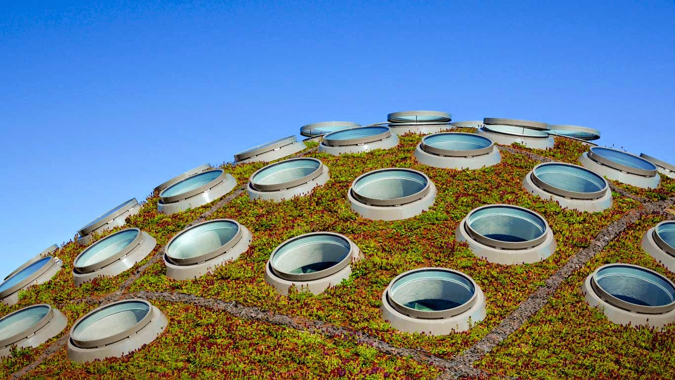 The Living Roof, California Academy of Sciences, Golden Gate Park, San Francisco, California (© Tim Griffith/Corbis) 254