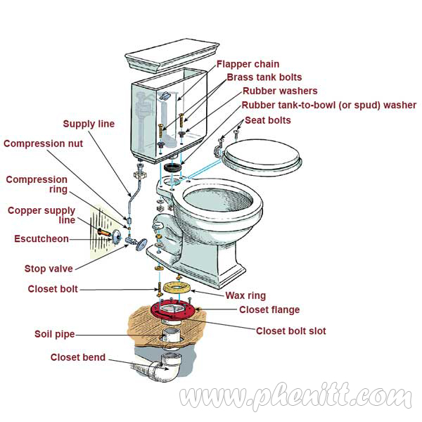 Phenitt HK Industry Limited How To Install A Toilet All