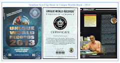 Unique World Records - 2013
