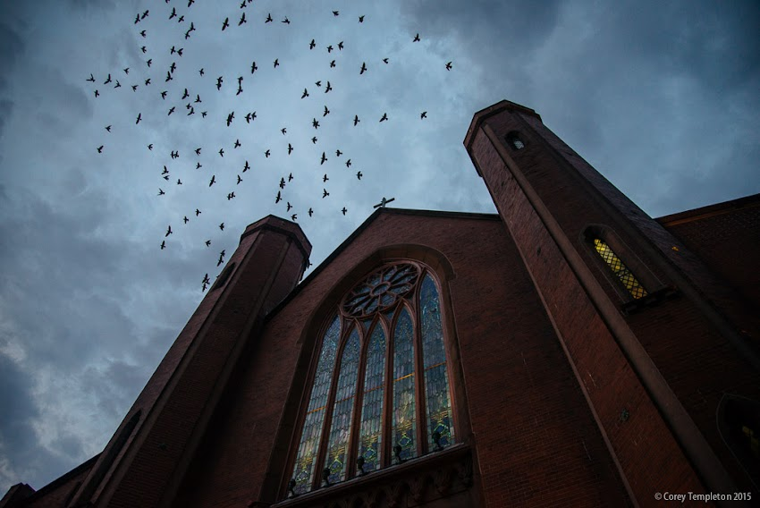 Portland, Maine USA October 2015 Chestnut Street church and birds flying in the sky photo by Corey Templeton.