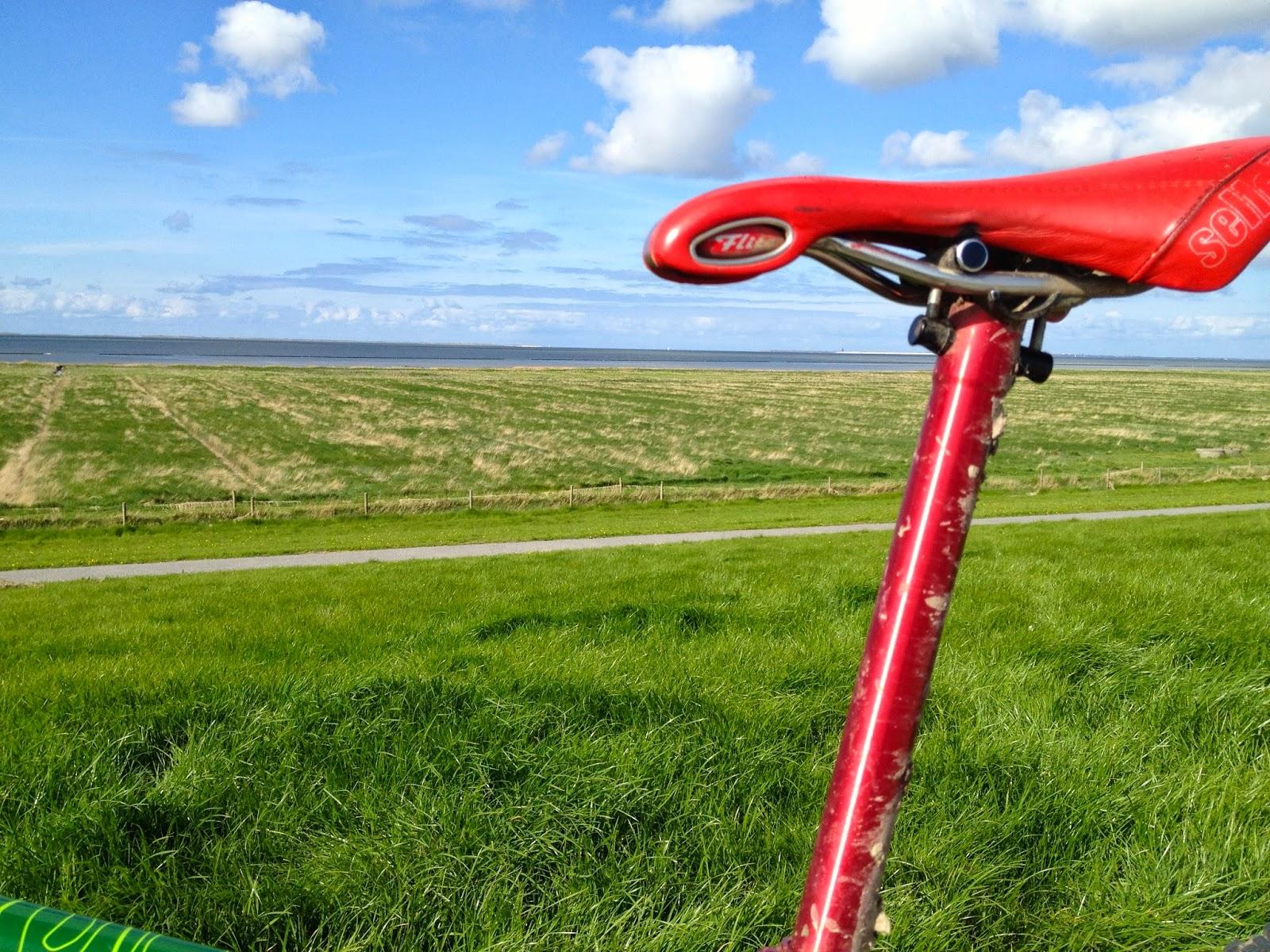 Ns Bikes Suburban Dirt Bike Bmx Fahrrad Mountain Bike tausche auch gg ...