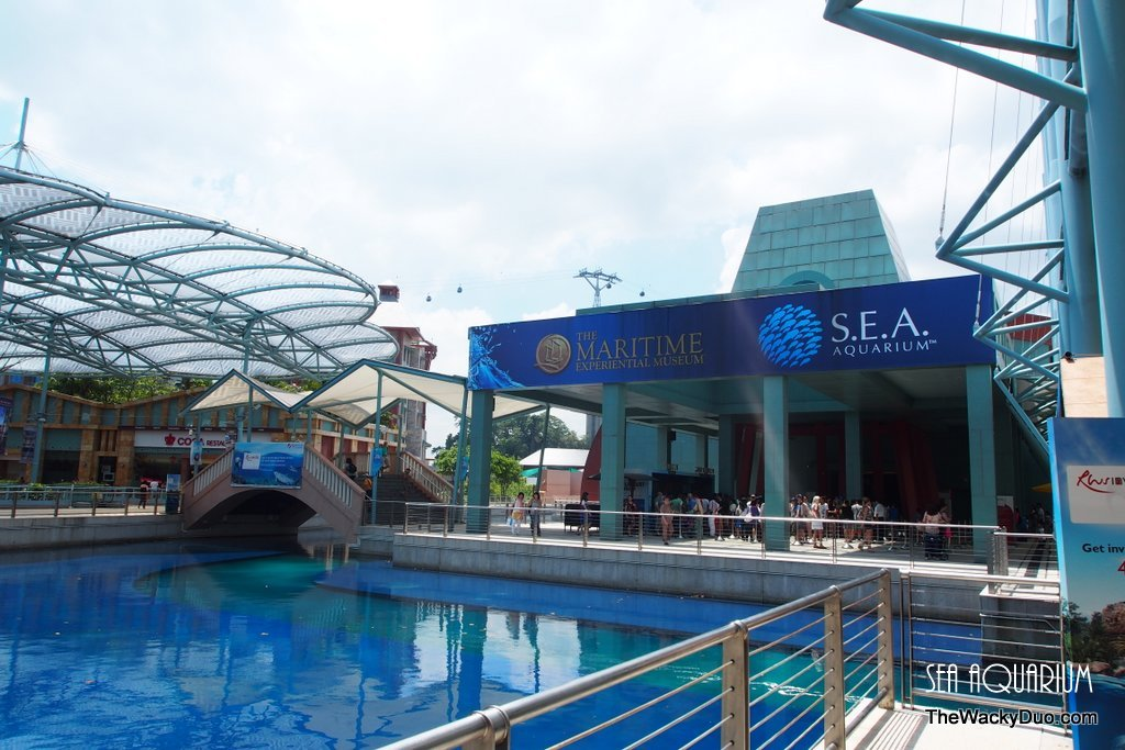 Sea Aquarium Rws Review