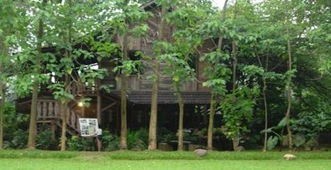 Tempat Wisata di Depok Kampung Rusa Depok
