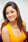 Actress Shilpi Sharma Hot Photo shoot-thumbnail-19