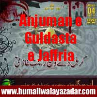 http://ishqehaider.blogspot.com/2013/11/anjuman-e-guldasta-e-jaffria-nohay-2014.html