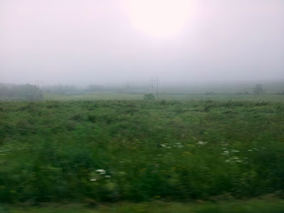 Focus on life: Green ~ Through the hills of New York through fog and rain :: All Pretty Things