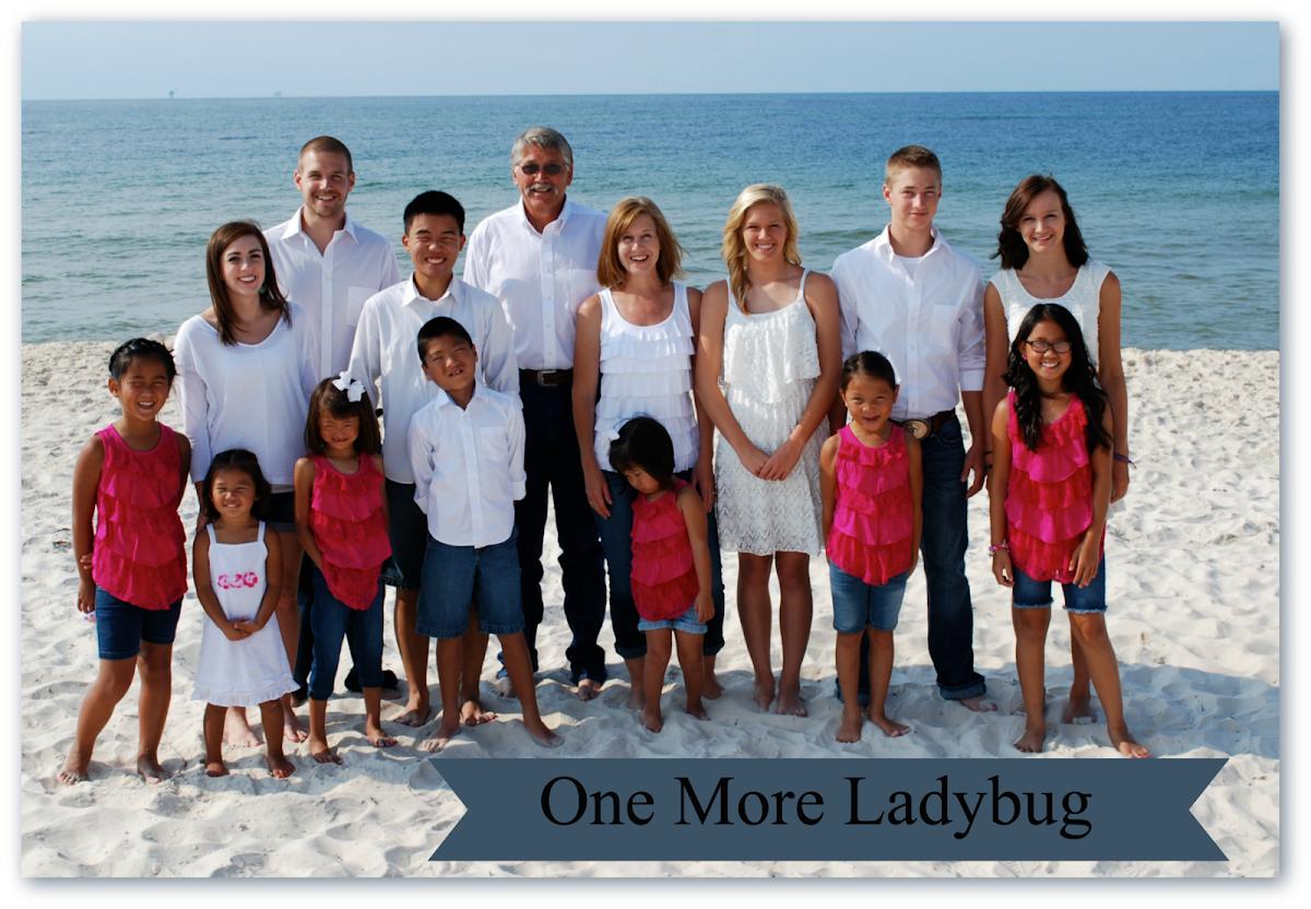 One More Ladybug