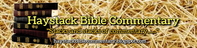 Haystack Bible Commentary