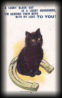 Vermont Dead Line The Bad Rap Of The Black Cat