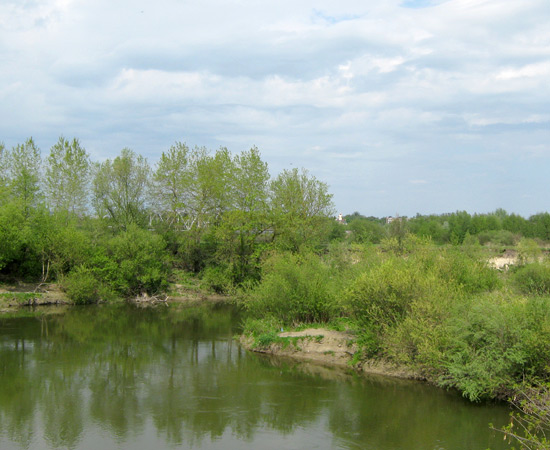 photo, прогулка, на речке