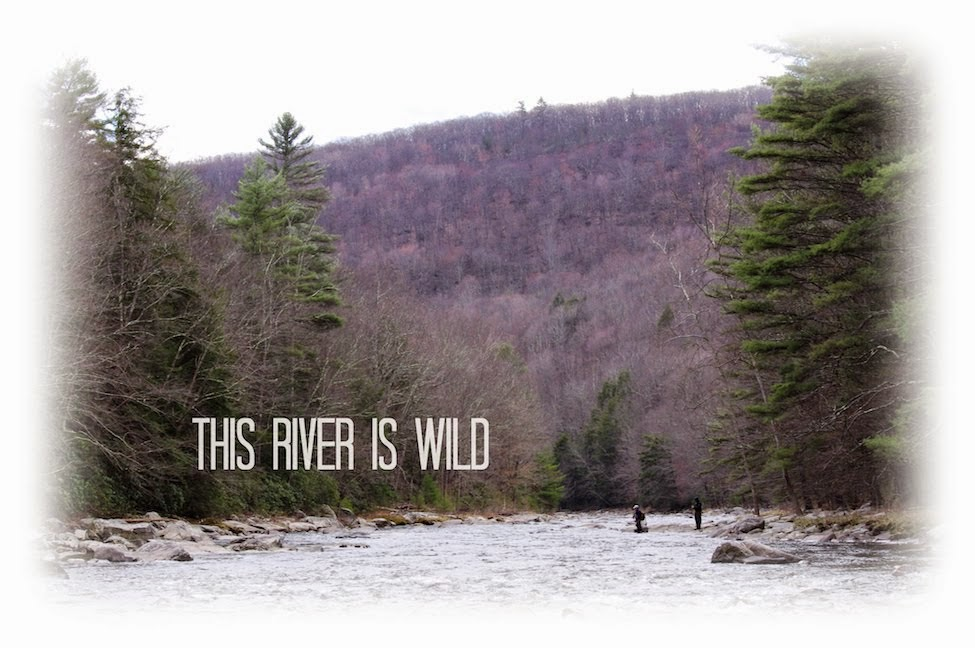 This River is Wild