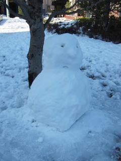 近所の子どもたちが作ったであろう雪だるまの写真