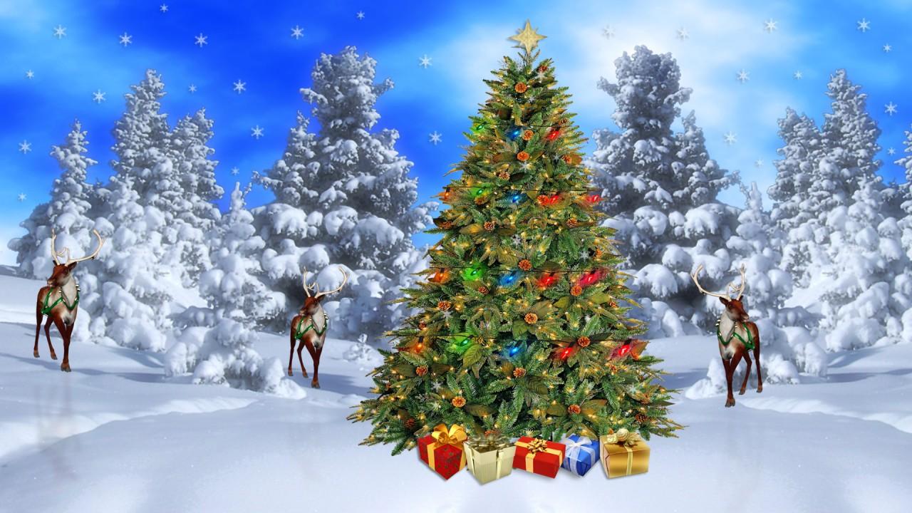 merry christmas splat read aloud