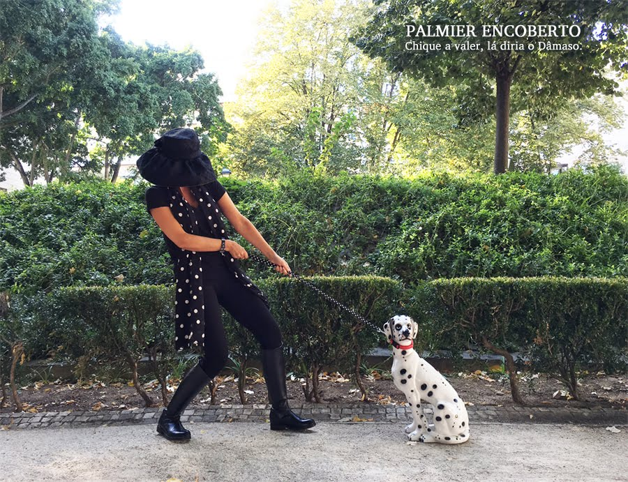 Palmier Encoberto