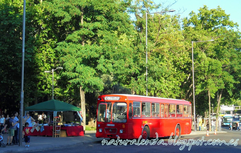 autobus antiguo de Madrid