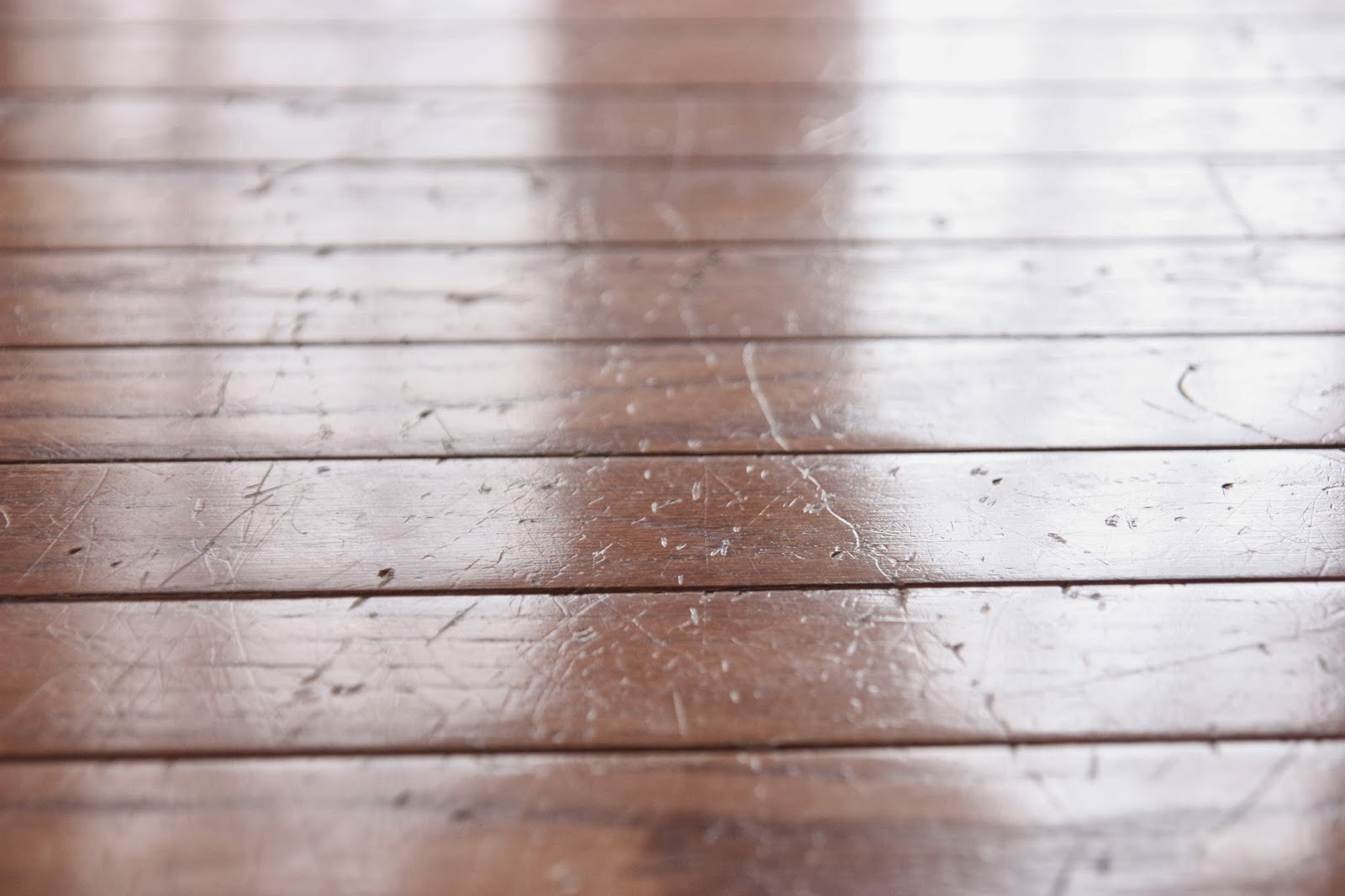 Rejuvenate Review Refresh Your Engineered And Wooden Hardwood - How to refresh hardwood floors