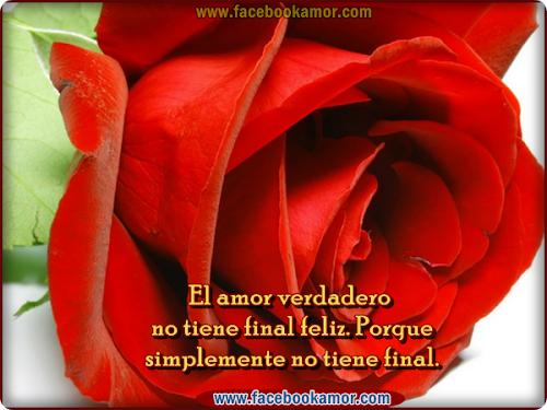 postales de rosas rojas