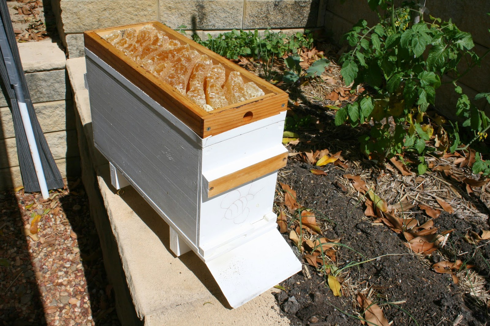 Custom Nuc Beehive - Honey overflow