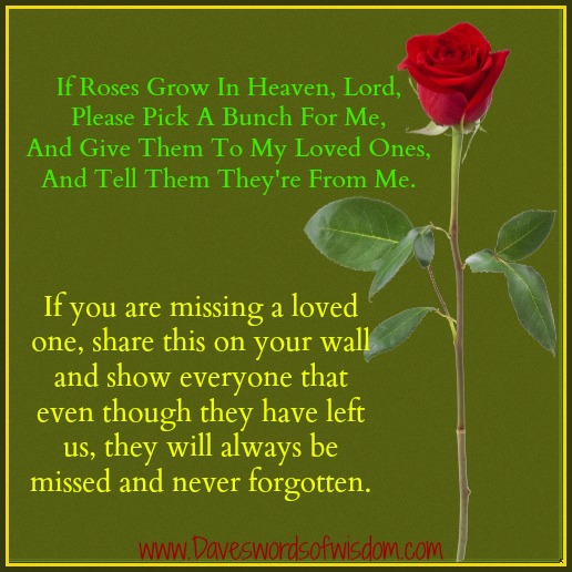 Honoring Lost Loved Ones Quotes : Missing Loved Ones in Heaven Quotes