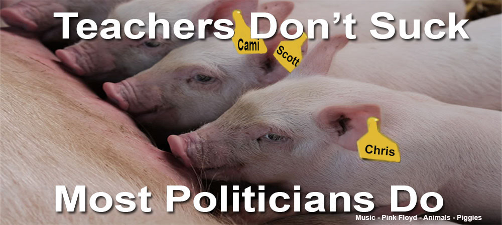Teachers Don't Suck - Most Politicians Do