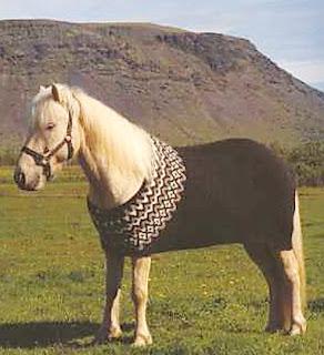 Вязаная попона для лошади