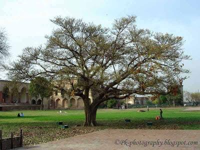 Shahi Qila Lahore